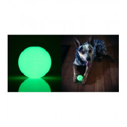 Glow in the dark bal (large)